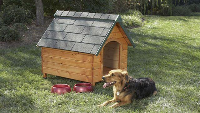caseta-perro-contrachapado